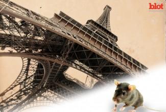 Blot_8-18_Paris